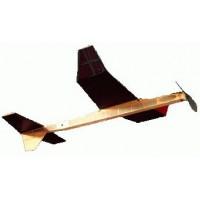Kiwi - P-30